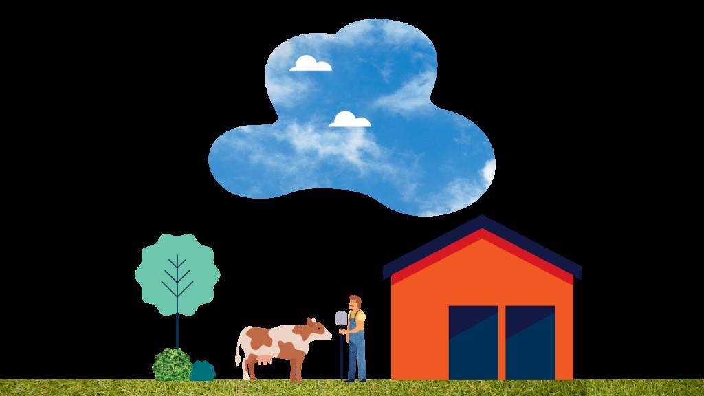 7. livestock insurance 3 1